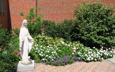 Re-consecration to the intercession and protection of Our Lady under the title of Mary, Mother of the Church.